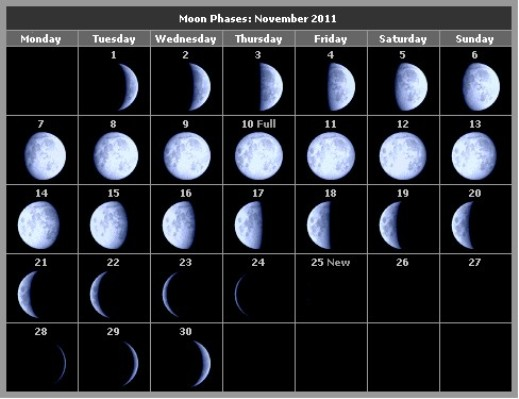 november moon phases calendar